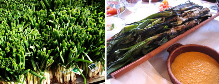 January – April: Calçots Season